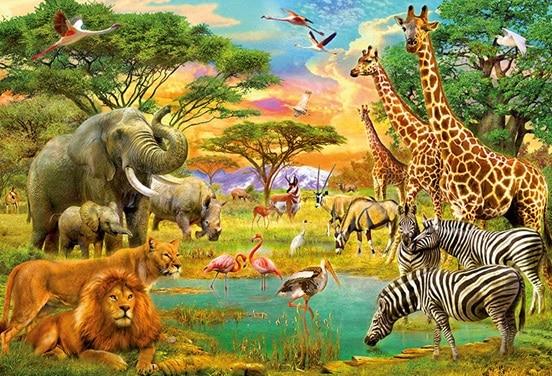 une_anniversaire jungle2_diabolomint