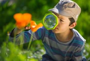 une_stage explorateur nature_future en herbe