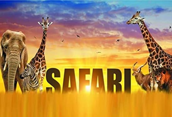 une_anniversaire safari_cotillons